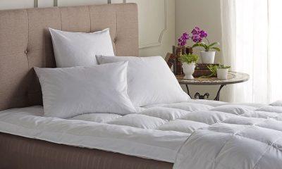 التخلص من حشرات السرير